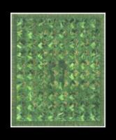"""Grass, 2013. photographs (printed on photo rag paper), acrylic paint, and glue on linen. 40"""" W x 49"""" H"""
